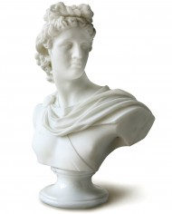 busto-apollo-belvedere-marmo