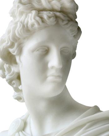 Belvedere Apollo's bust