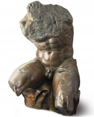 torso-belvedere