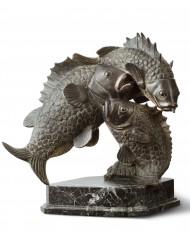 tuffo-pesci-tofanari