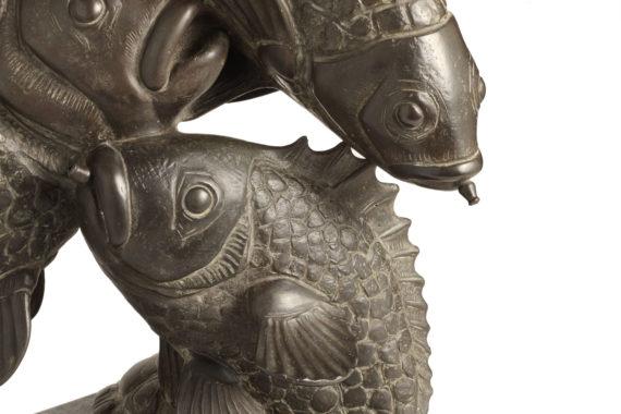 tuffo-pesci-tofanari3