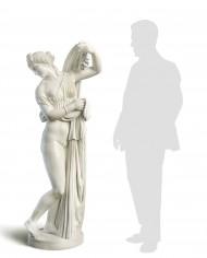 venere-callipige-silhouette