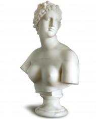 busto-venere-medici-marmo