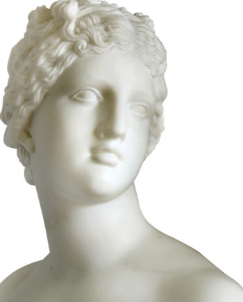 Busto Venere dei Medici