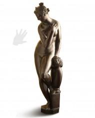 venere-boboli-giambologna-silhouette