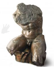 torso-belvedere-silhouette
