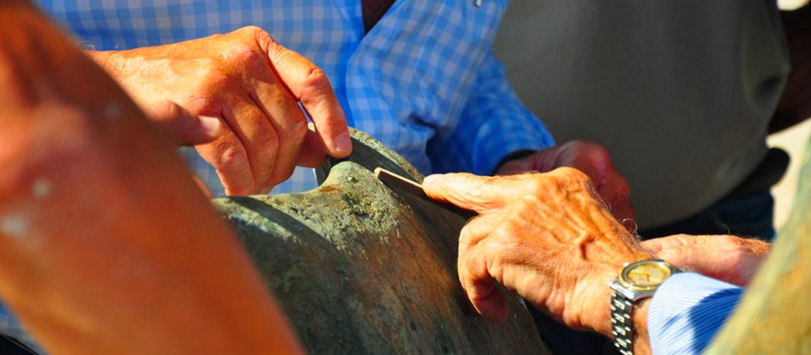 fonderia marinelli galleria bazzanti fontana tritoni malta bronzo restauro indagine conoscitiva